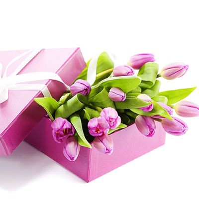 Pink tulips in a box - buy with delivery in Kiev and Ukraine